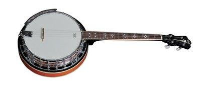 VGS Banjo Premium 4saitig