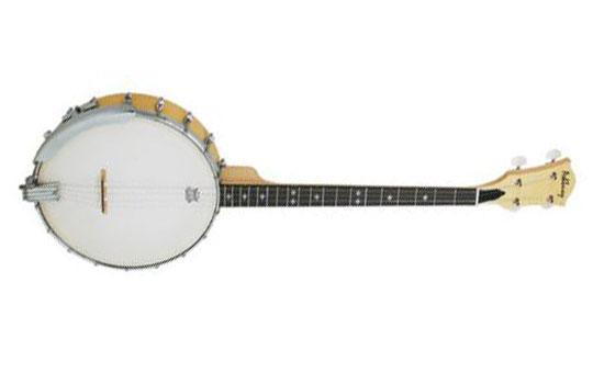 Ashbury GR3827 Banjo AB-25-T Tenor 4-string