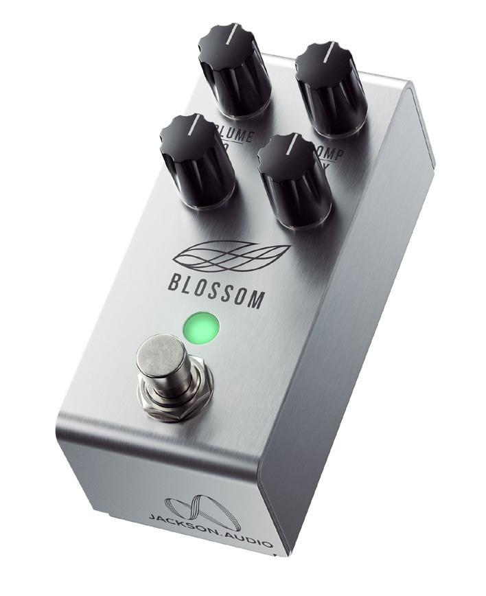 Jackson Audio BLOSSOM Optical Compressor Peda